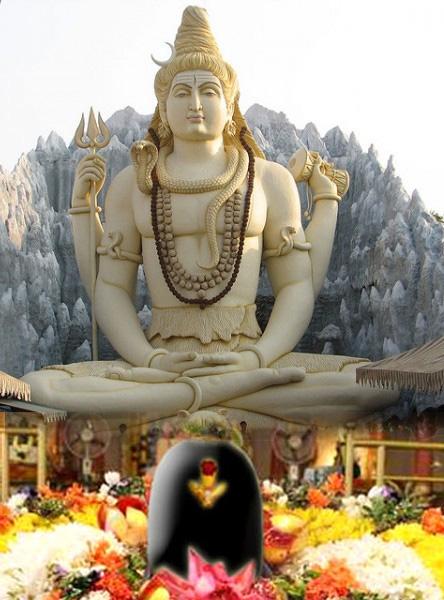 Parthiv Shivling Puja